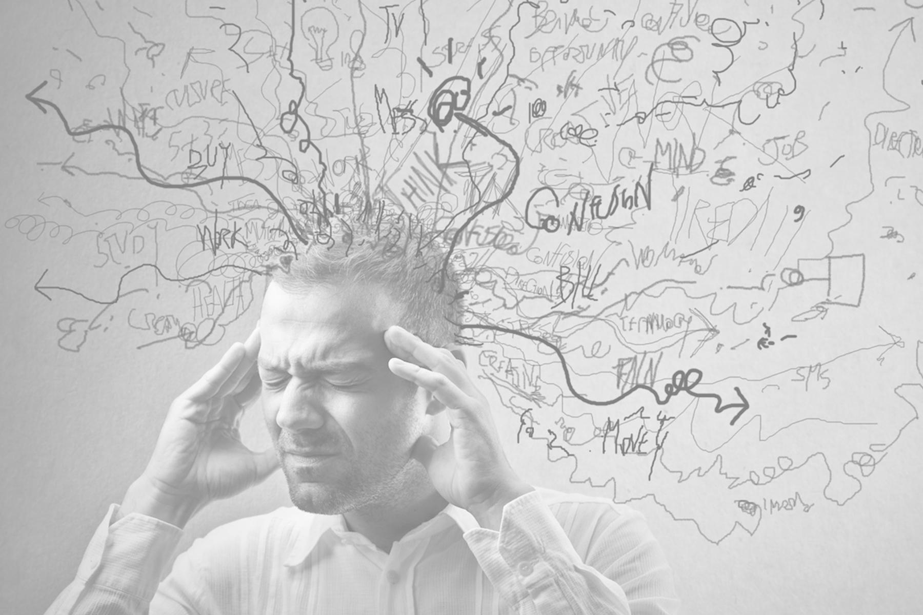 feedback en het brein