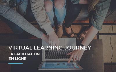 La facilitation en ligne